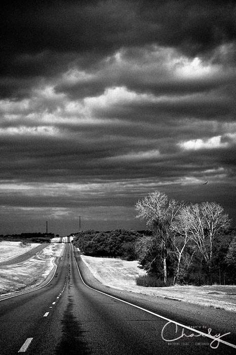 Limited Edition Desolate Highway © Imagery by Charly™ | All Rights Reserved