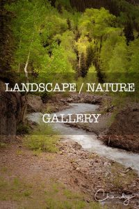 Landscape and Nature gallery © Imagery by Charly™   All Rights Reserved
