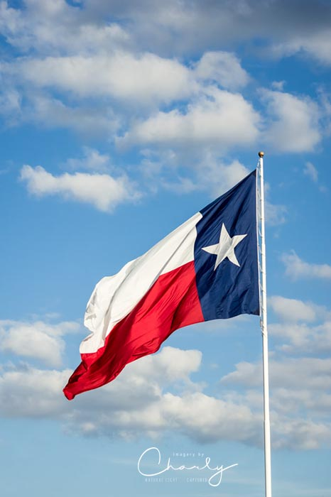 Waving Texas Flag © Imagery by Charly™ | All Rights Reserved