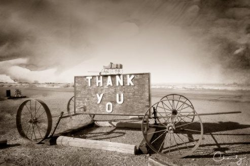 Thank You Wagon © Imagery by Charly™ | All Rights Reserved