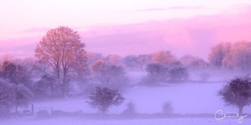 Wintry Irish Countryside © Imagery by Charly™ | All Rights Reserved